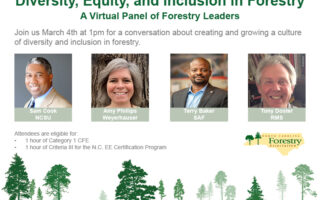 Diversity, Equity, and Inclusion in Forestry